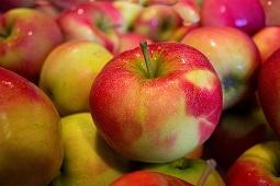Chiny zaczęły dostarczać jabłka do Rosji i Białorusi