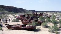 Uzbekistan chce dokonać wraz z Kazachstanem wspólnych nasadzeń na dnie Morza Aralskiego