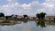 USA przekaże Uzbekistanowi 100 tysięcy dolarów na pomocy