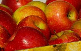 Afganistan dostarczy Rosji jabłka