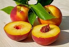 Uzbekistan rozpoczyna eksport owoców do Omanu