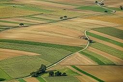 Putin: Rosja zarabia więcej na rolnictwie niż na broni
