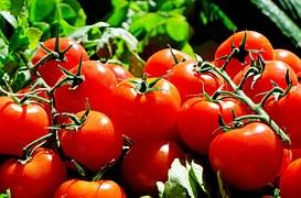 Ukraina pobiła rekord pod względem importu warzyw
